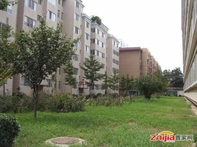 龙泉花园东区