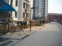 南湖花园三期 项目正在做院内绿化