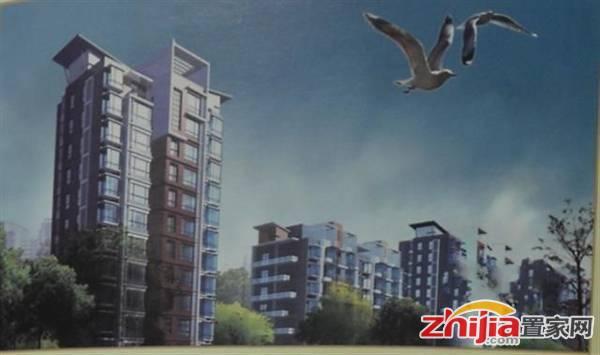 金龙·渤海新城