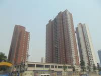 华浩广星源 实景图。2014-06-25