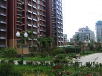心海假日 现房实景园林图(2014-07-21)