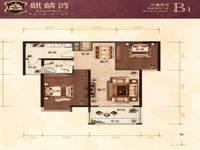 麒麟湾2室2厅1卫户型图