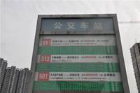 朝阳花园 公交站牌