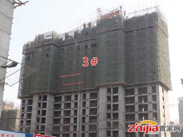 赵都新城 S17标地3#楼