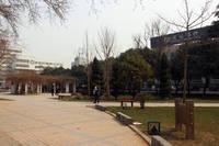 丛台花园 罗敷公园
