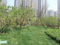 美的城·誉峰 二期园林实景图