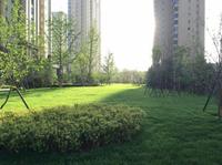 美的城·誉峰 小区草坪