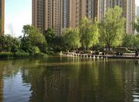 美的城·誉峰 小区湖边