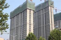 苏堤杭城 8月12日工程进度