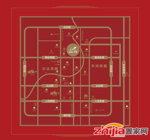 碧桂园天玺 区位图