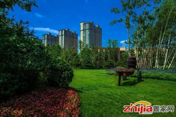 尚宾城 园区实景
