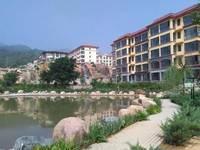 藏龙镇 实景图