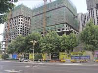阳光新卓广场 施工进度