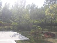 阳光东尚 实景图