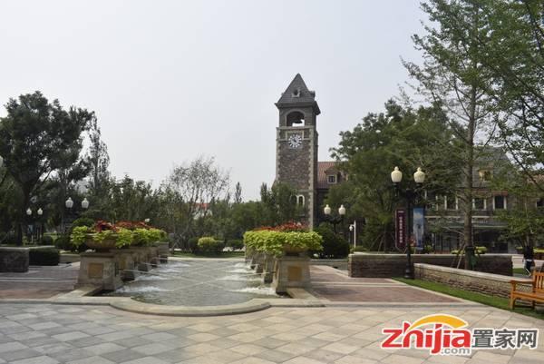 新兴花语原乡 实景图