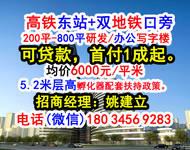 (首开盘抄底价)高铁东站+地鉄口+5.2米层高+办公楼可贷款
