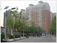 新一代C区 4室2厅2卫 198m² 租金4000元/月
