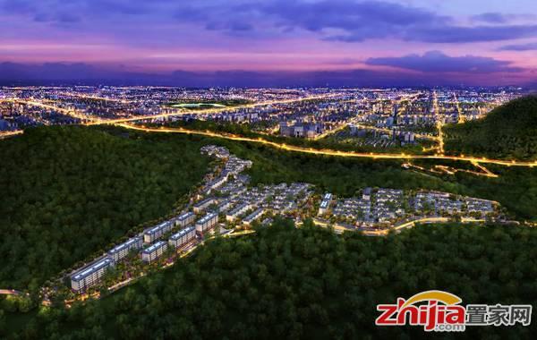 龙湖•天宸原著 区域鸟瞰