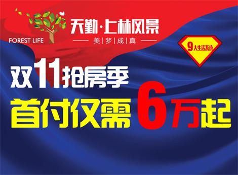 上林风景双11抢房季 首付最低6万起