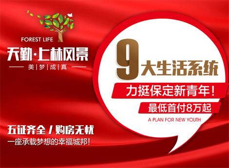 上林风景九大商圈