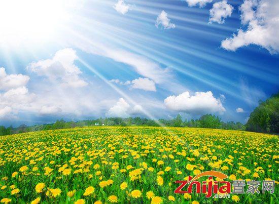 亚洲无ma区春暖花开_来自星星的你 盘点邯郸高大上楼盘 导语:寒冷的冬天即将结束春暖花开
