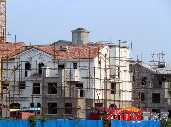 紫岸南区联排别墅和独栋别墅即将封顶