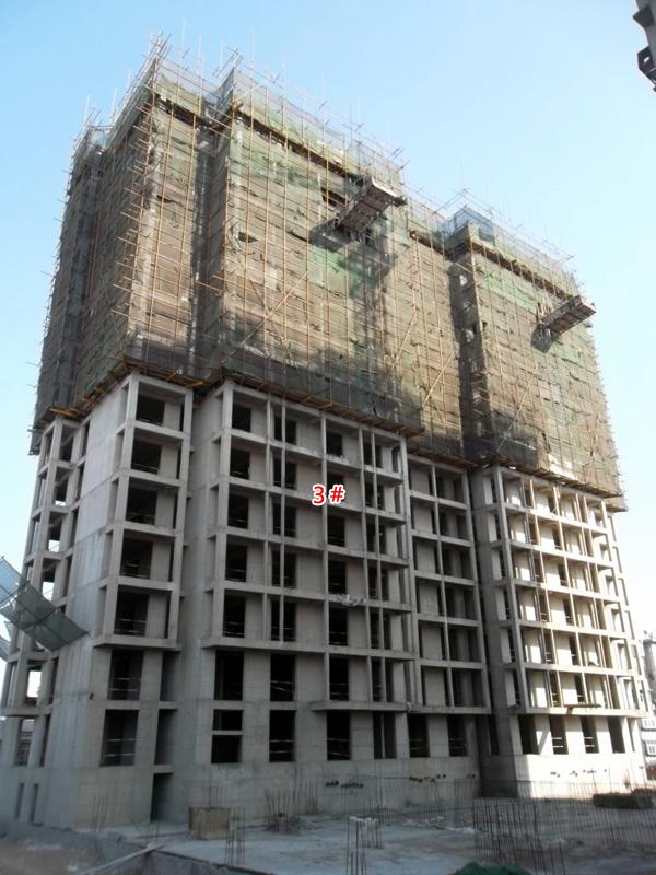 华都嘉苑两栋住宅楼项目均已盖至15层