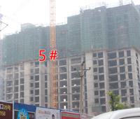 赵都新城S17号地施工进度神速 5#楼已盖至17层