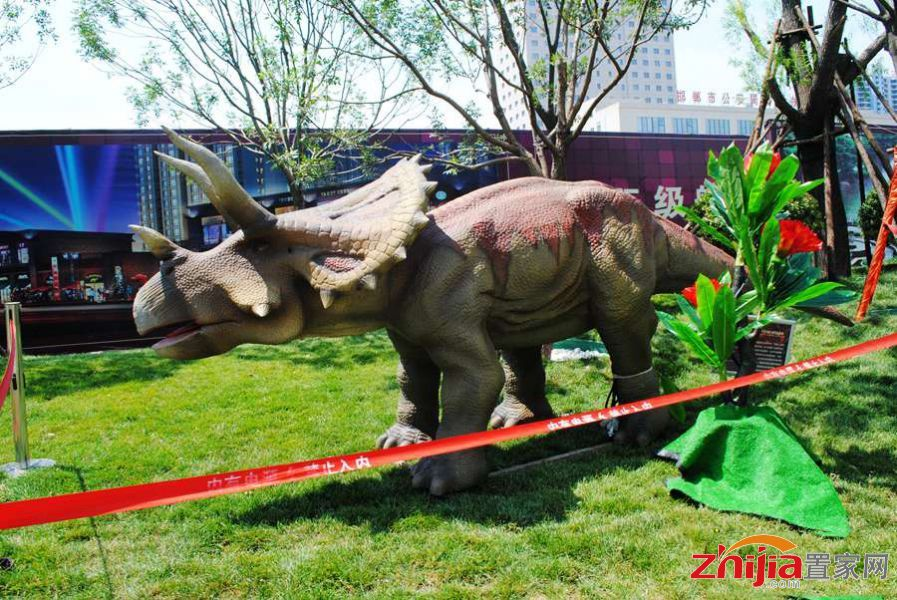 恒大名都首届大型恐龙展 带大家重返侏罗纪