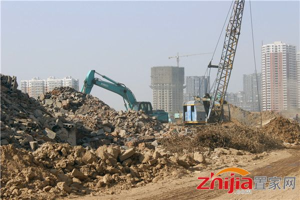 现场数量机器施工运作,现场已经竖起了塔吊,打桩机器也在施工中.