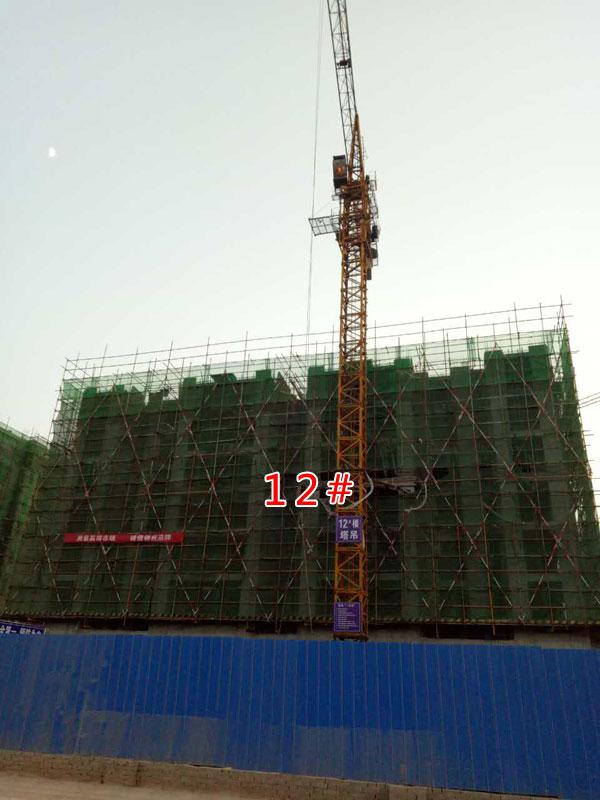 凤凰国际建至8层 各项工作有序进行