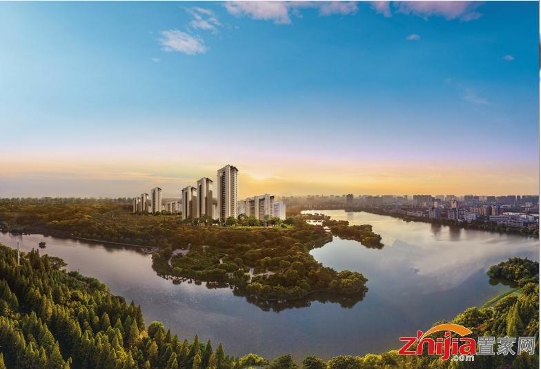 梦湖孔雀城   远离城市污染——噪声污染