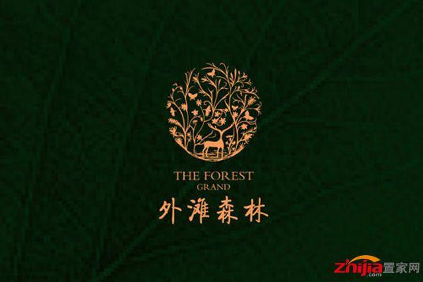 外滩森林效果图logo