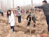 东胜集团领导亲自参与公益植树