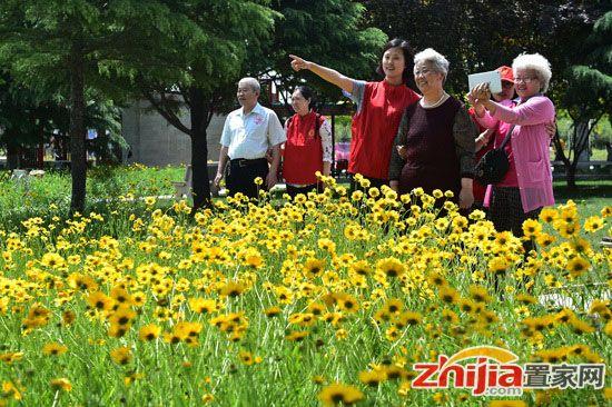百余位老人石家庄植物园过别样母亲节