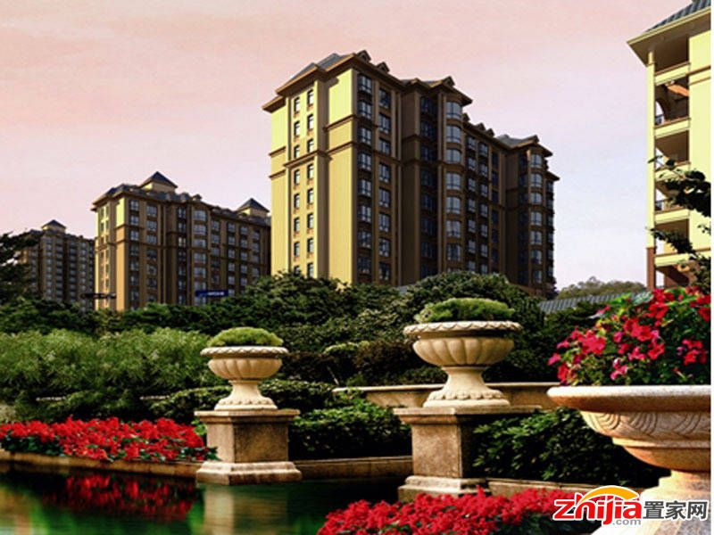 鸿泉·龙湾-新华路小高前期规划中