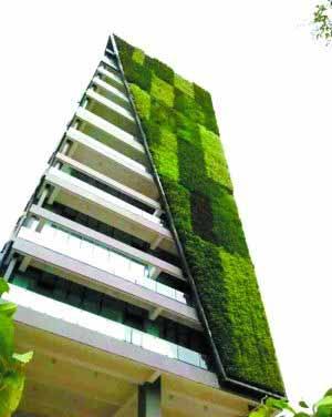 """立体绿化让城市变""""田园""""?"""