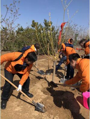 """华尔街英语参加""""北京国际友好林""""植树活动"""