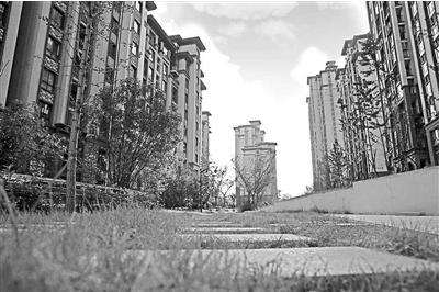 河北楼市观察之石家庄篇:大房企,大户型成主流
