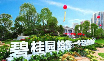房企5月业绩增幅明显 碧桂园累计销售已突破3000亿元