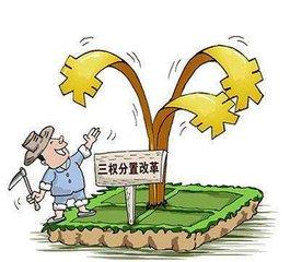 """农村宅基地""""三权分置""""改革全面提速"""