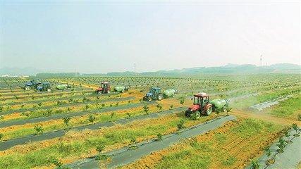 鹿泉区现代农业产业园入选国家现代农业产业园创建名单