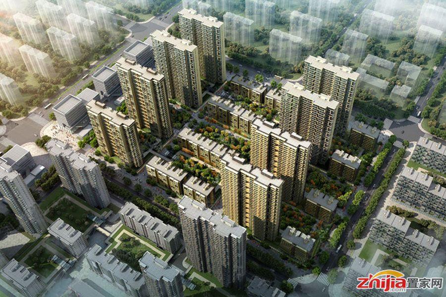 安联生态城打造8E新生态价值体系,营造健康家园