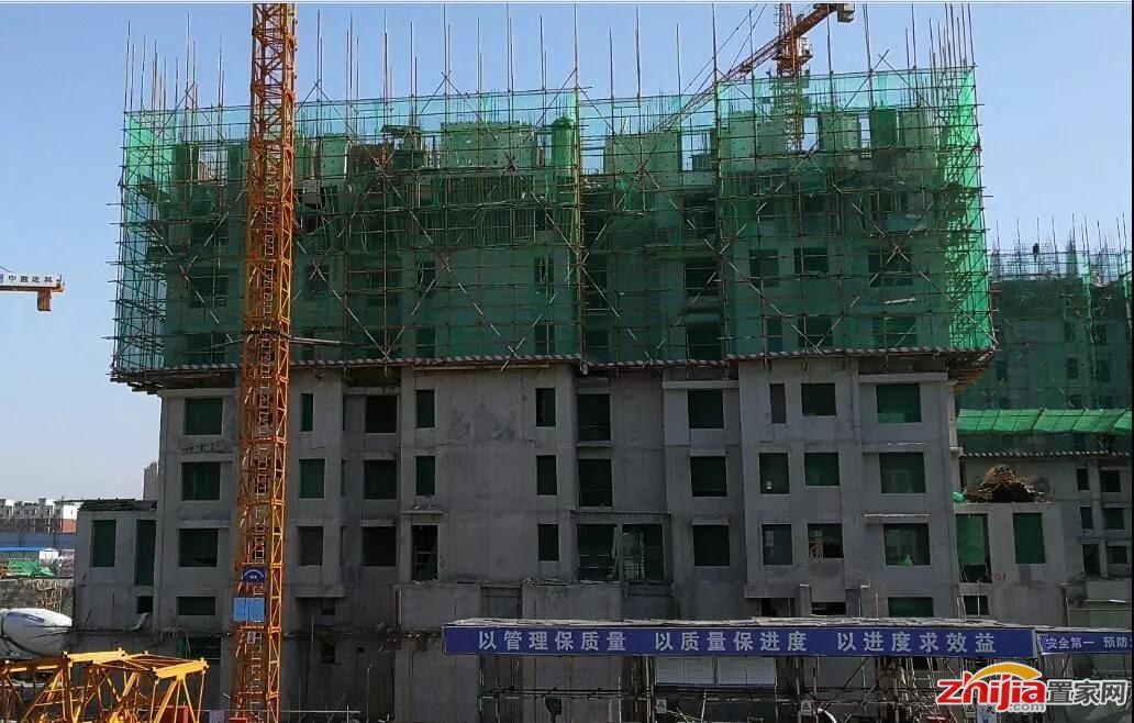 安联地产八月施工进度|安联生态城项目全速推进!