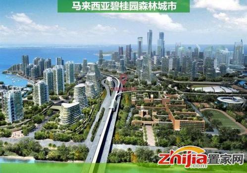 马来西亚总理:碧桂园森林城市项目不得向外国人销售