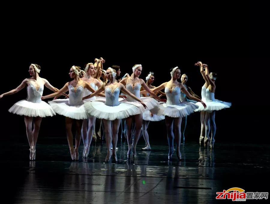 有戏 | 古典芭蕾《天鹅湖》来袭,石家庄演出场已被尚宾城承包