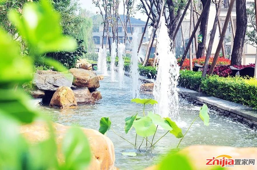 天山熙湖三期 | 匠心园林 葱翠流水的诗意