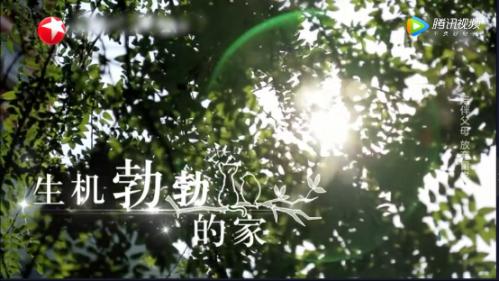 http://www.jiaokaotong.cn/chuguoliuxue/243527.html