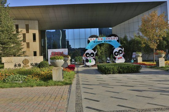 """永康境界""""牵手熊猫 你就是国宝""""熊猫展览盛装启幕"""